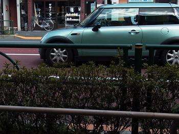 うす緑.jpg