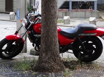 カワサキ (700x523).jpg