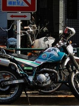 ヤマハ (523x700).jpg