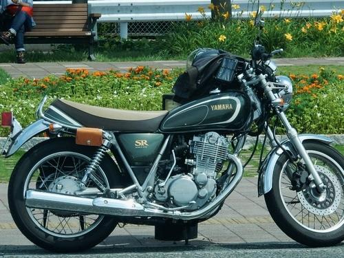 ヤマハ SR(750x563).jpg