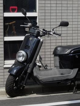 ヤマハVOX (525x700).jpg