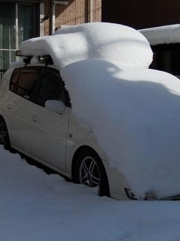 雪 (524x700).jpg