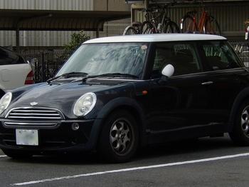 青 (700x524).jpg