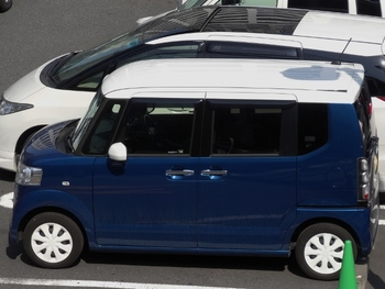 青 (700x526).jpg