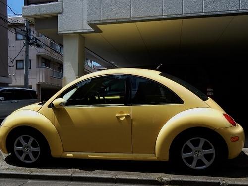 黄色(700x525).jpg