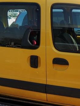 黄色 (524x700).jpg