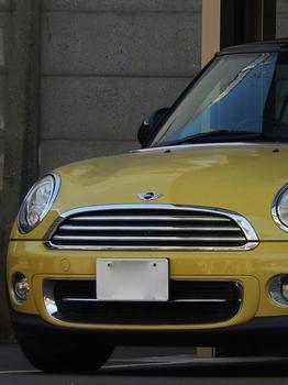 黄色 (525x700).jpg