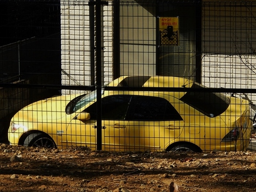 黄色 (700x526).jpg