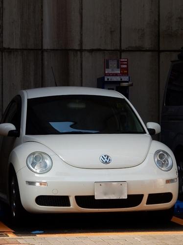 VW(561x750).jpg