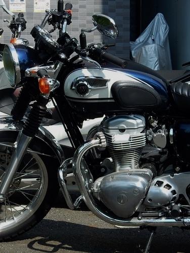 カワサキ W800 (564x750).jpg