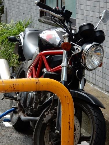 ホンダ VTR(527x700).jpg
