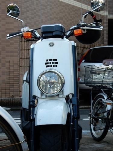 ヤマハVOX(526x700).jpg