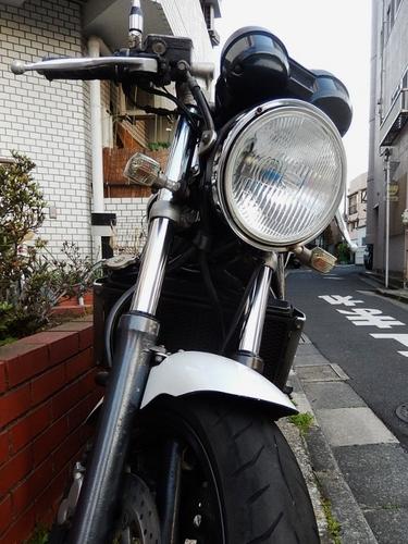 正面(525x700).jpg