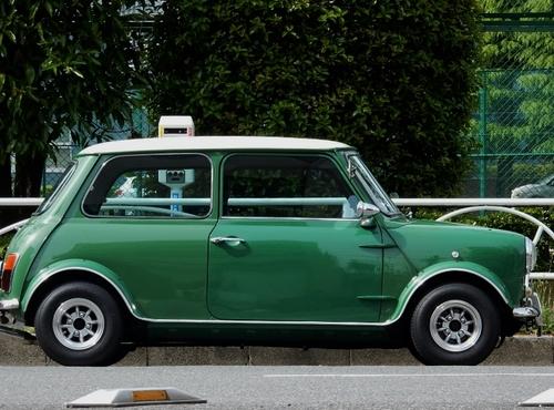 緑(800x593).jpg