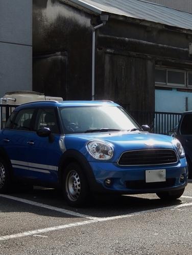 青(527x700).jpg