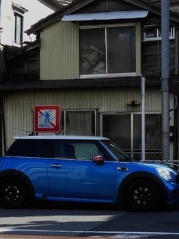青 (524x700).jpg