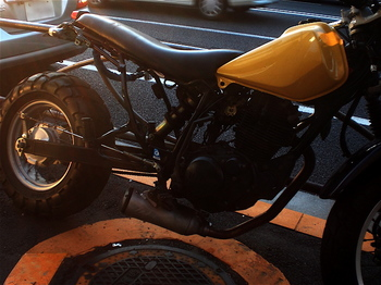 黄と黒灰色.jpg