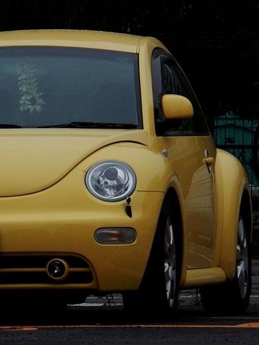 黄色(564x750).jpg