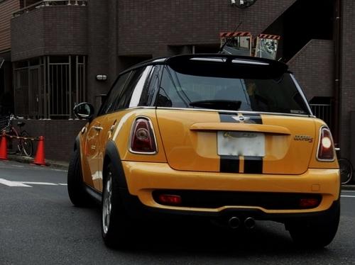 黄色 (800x599).jpg