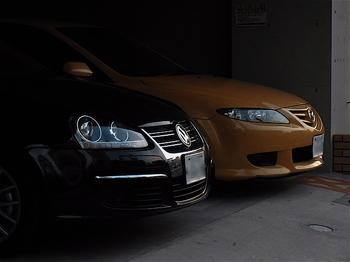 黒、黄.jpg